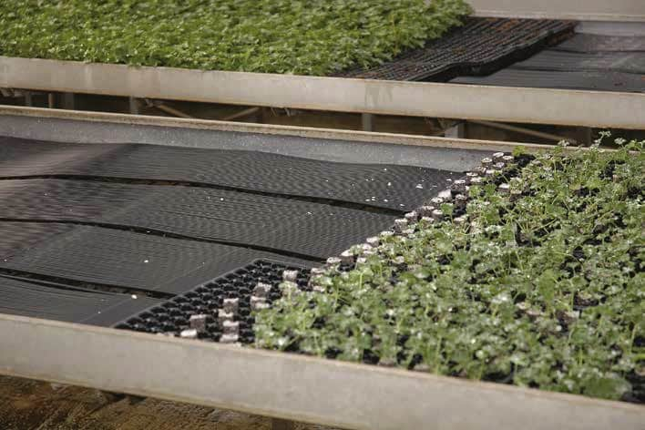 Agrimat - root zone heating system for greenhouses